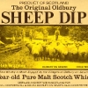 sheep-dip-vatted-malt-8-yo